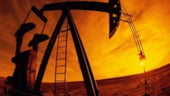 Irakul si Venezuela cer OPEC sa mentina nivelul actual al productiei de petrol
