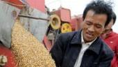 Romania devine granarul Chinei. Ne dau banii pentru ferme si ne cumpara produsele