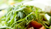 Scumpirea alimentelor a accentuat in ianuarie inflatia din Statele Unite