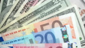 Geoana cere calendar pentru repornirea creditului si informarea populatiei despre imprumutul extern