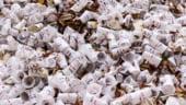 Circuitul reciclarii este in haos dupa ce China a refuzat sa mai fie pubela de gunoi a lumii