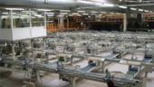 Producatorul polonez de parchet Barlinek vrea o fabrica in Romania