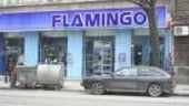 Flamingo are nevoie de o infuzie de capital de circa 5 mil. euro pentru accelerarea afacerilor