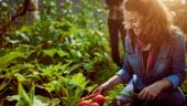5 modalitati inovatoare prin care fermierii isi pot creste profiturile