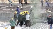 Romania are nevoie de constructori si de agricultori