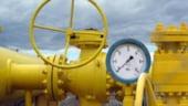 ANRM: Avem interesul sa facem explorarea gazelor de sist pentru a cunoaste arhitectura solului
