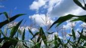 AFP: Romania - Bruxelles-ul retrage amenintarea cu reducerea asistentei agricole