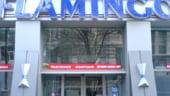 Flamingo International va aloca 600.000 euro in trei magazine Flanco