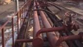 Videanu: Romania ar putea trece printr-o noua criza a gazelor la iarna