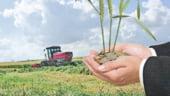Strainii au unda verde la terenurile agricole. Vezi ce procedura trebuie sa indeplineasca