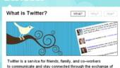 Co-fondatorul Twitter dezminte zvonurile de vanzare sau listare pe bursa