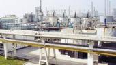 Oltchim vrea sa investeasca peste un miliard de euro in urmatorii ani pentru dezvoltarea productiei