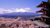 Japonia este dispusa sa ofere mai multi bani FMI, pentru a ajuta Europa