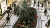 Sonae Sierra a investit pentru extinderea centrului comercial Plaza Mayor
