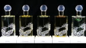Chantecaille lanseaza colectia de parfumuri invelite in Swarovski