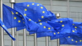 Un nou motiv de tensiune intre UE si Rusia