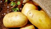 Cartofii si citricele sunt alimentele care s-au scumpit cel mai mult in 2019