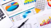 Situatiile financiare pe 2013: La ce trebuie sa fiti atenti cand le completati