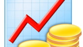 IMM-urile apreciaza cresterea vanzarilor pe piata interna ca principala oportunitate in 2009