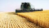 Agricultura si constructiile au franat cresterea economica, sustinuta de industrie si impozite