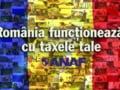 De la 1 februarie, ANAF acorda codul de TVA in aceeasi zi cu depunerea cererii