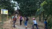 In Parcul Natural Vacaresti a fost inaugurata poteca biodiversitatii urbane - are 2,5 km si sapte zone tematice