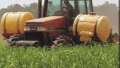 Agricover estimeaza cresterea afacerilor cu 53% in acest an, pana la 360 milioane lei