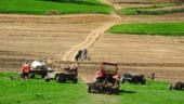 Terenurile agricole ii imbogatesc pe straini. Unde greseste statul