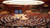 OCDE si Consiliul Europei vor sa imbunatateasca tratatul privind evaziunea fiscala