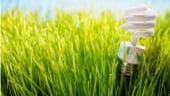 Analiza. Romania reduce ajutoarele pentru energia verde