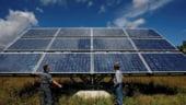 Puterea soarelui: Panourile fotovoltaice vor produce mai mult decat Cernavoda in 2016