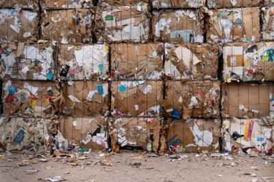Care sunt principalele reglementari referitoare la legislatia mediului? Reguli pentru managementul deseurilor