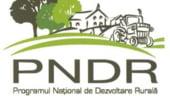 Ministerul Agriculturii va finanta diferenta nefavorabila de curs valutar din cadrul PNDR