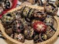 """Paste in Bucovina: Cat costa """"traditionalul"""" la romani?"""