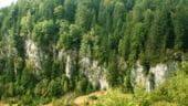 Romania risca sa piarda 4 milioane de euro din fondurile europene destinate ariilor naturale protejate