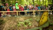 Peste 100.000 de oameni au vizitat Dino Parc Rasnov in primele doua luni