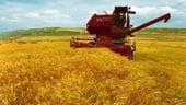 Vom mai avea agricultura peste 20 de ani?