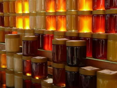Crescatorii de albine din Ungaria vor fi scutiti de impozitul pe profit