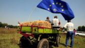 Comisia Europeana preconizeaza amanarea cu un an a reformei agricole