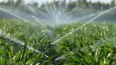 Fermierii vor face fata mai usor secetei: Apa pentru irigatii se ieftineste cu 20%