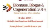 Biomasa, urmatorul trend in sectorul energiei verzi