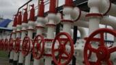 Videanu: Romania va avea depozitele de gaze pline in octombrie
