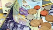 Bugetul Romaniei pe 2014. Ce institutii primesc bani in plus si cine sunt perdantii