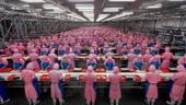 China si-a redus activitatea industriala