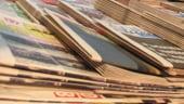 Deloitte: Marjele din telecom scad, mediul online creste
