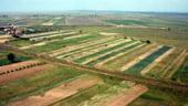 Irimescu, MADR: Strainii nu vor da buzna pe piata de terenuri in 2014. Impunem conditii