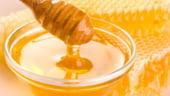 Productia de miere, redusa la jumatate din cauza secetei
