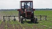 Cand va fi platit ajutorul de stat la motorina utilizata in agricultura