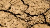 Franta vrea sa deblocheze subventii de un miliard de euro pentru fermierii loviti de seceta