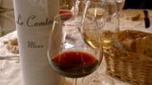Grenache este noul Pinot Noir: 8 vinuri care merita sa ajunga in colectia ta